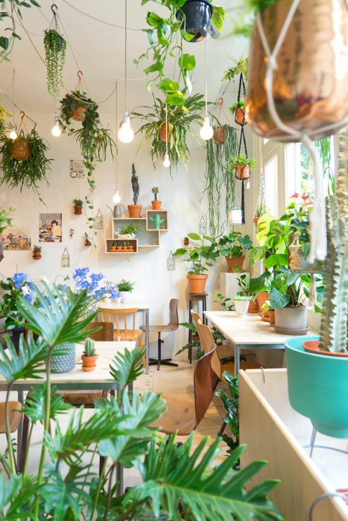 Indoor plants decoration 99 great ideas to display houseplants | indoor plants decoration | page PEJJGNX