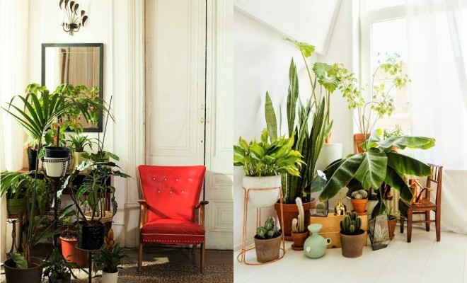 indoor plants ideas 7 different way to indoor plants decoration ideas in living room MAUNDDK