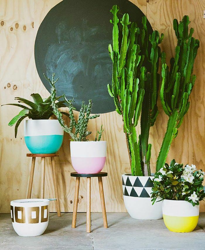 indoor plants ideas the more beautiful the pots, the more beautiful your plants look as LUWHATZ