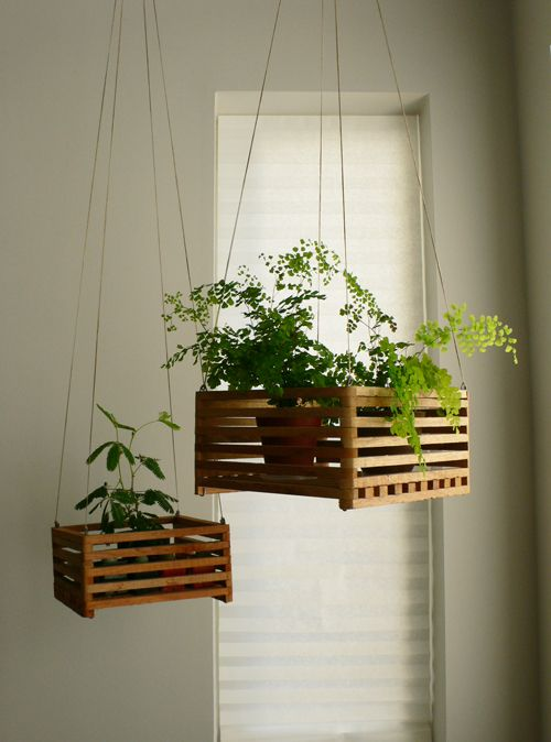 indoor plants ideas-use wooden crates to hang your herbs YTPOUUL