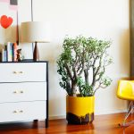 Modern planters ideas – So chic is the flowerpot