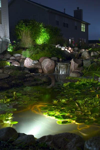 Pond Lighting, Garden Lighting Create Magic at Night | Ponds and