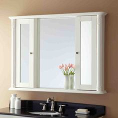 Bathroom Mirrors with Medicine Cabinet - Home Furniture Design
