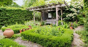 10 Landscape Lessons Learned From Garden Designing