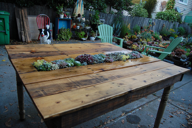 VIEW IN GALLERY Outdoor-Pallet-Furniture-DIY-ideas-and-tutorials12