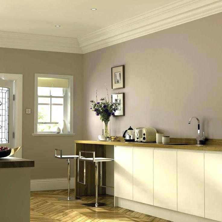 fearsome kitchen paint colours on ideas .