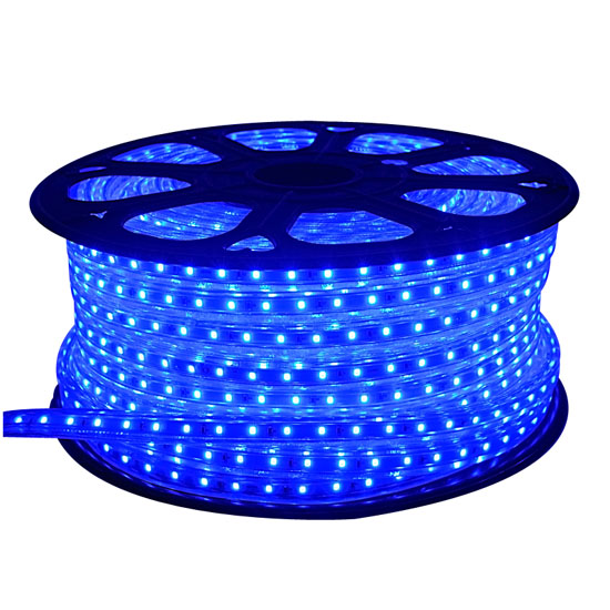 Outdoor LED Rope Lights | Commercial LED Outdoor Lighting | Outside