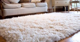Modern shag area carpet that make the place look beautiful with easy  maintenance
